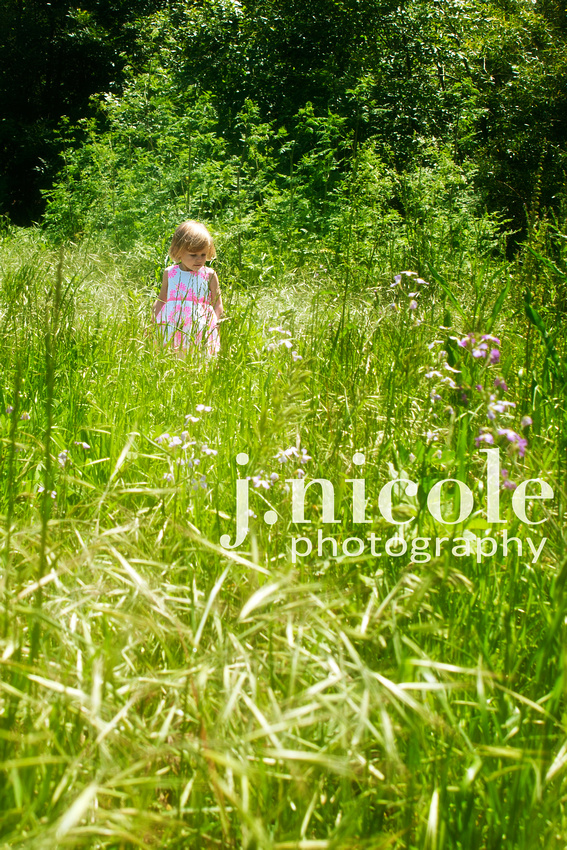 Summer time in a field